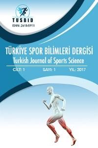Türkiye Spor Bilimleri Dergisi